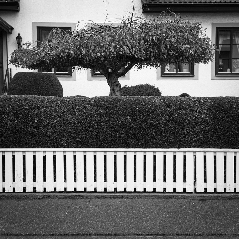osett4_photo_by_torbjorn_larsson